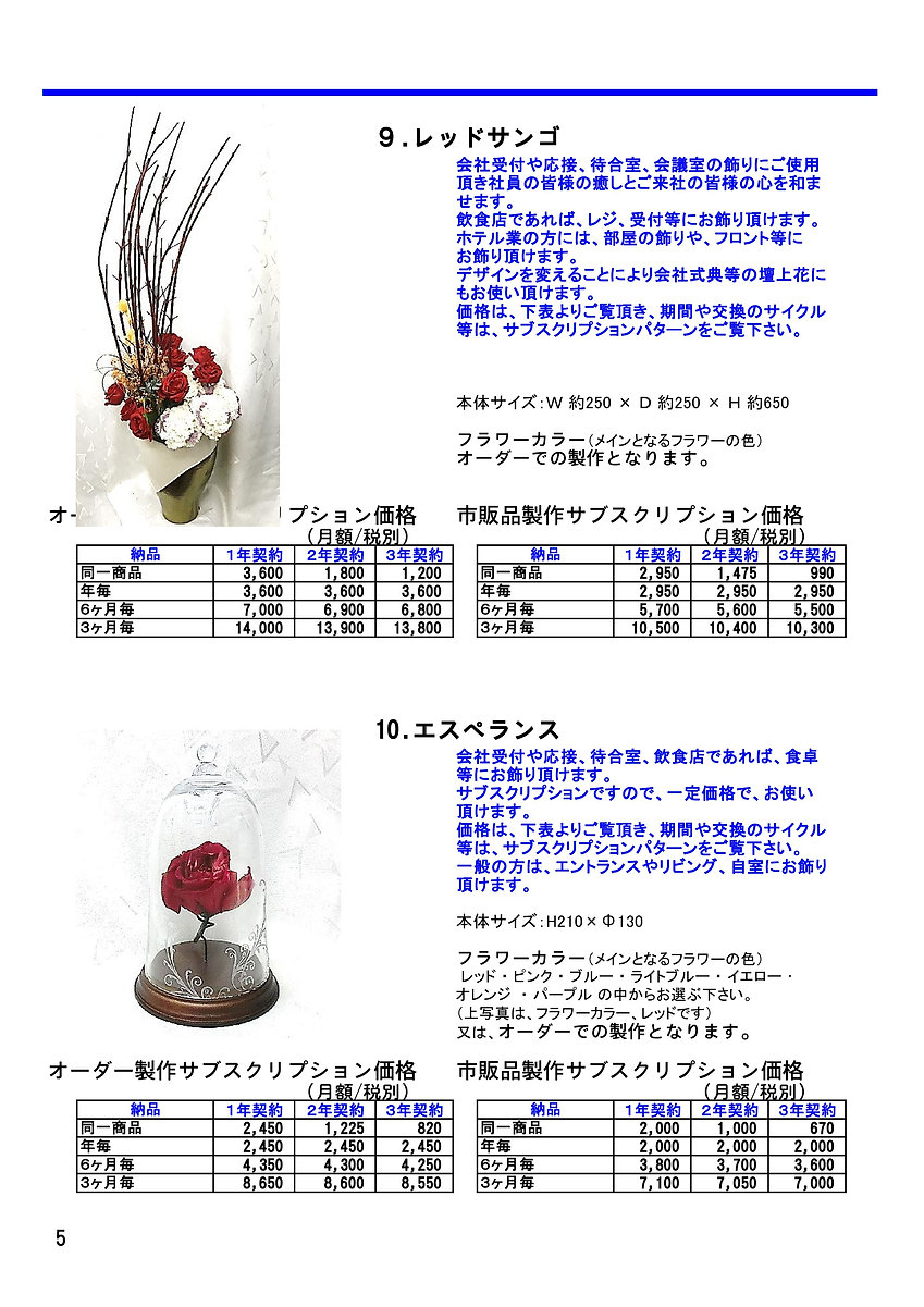 SOAR カタログ新  Ver1.0.1 薬剤込 A4 最新-2_PAGE000