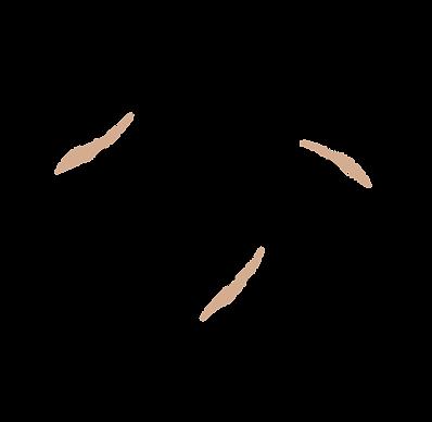 dark_wolf_logo.png