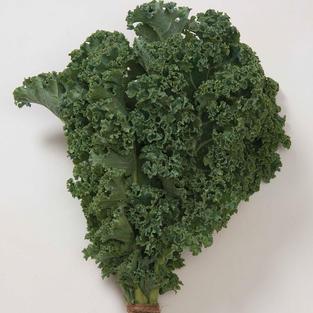 Kale Winterbor