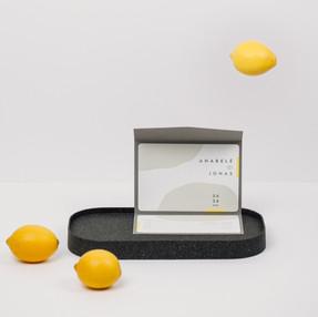 modernios citrinos