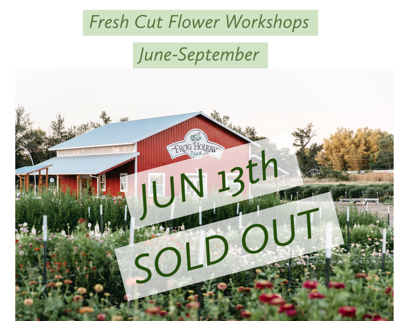 June 13 - Fresh Cut Flower Workshop
