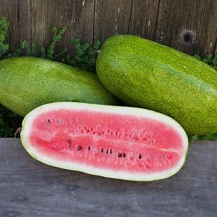 Watermelon - Alibaba