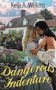 "Like feisty Irish heroines? Don't miss ""Dangerous Indenture"" - A Colonial Romance/Mystery"