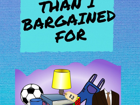 New Release - More Than I Bargained For