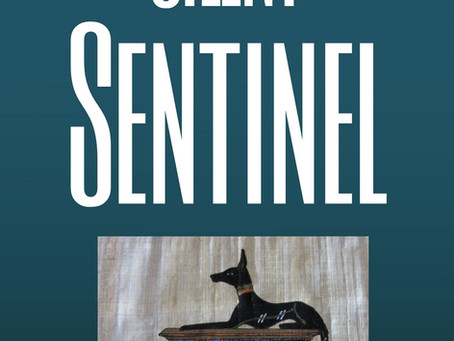 Just Released! Silent Sentinel - A Mini-Thriller