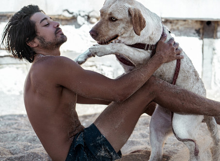 חוף הכלבים בתל אביב | חוף לכלבים משוחררים!