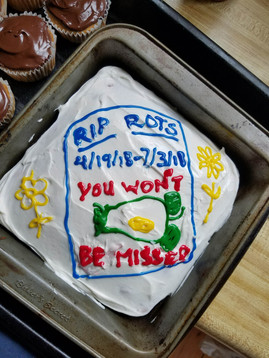 Memorial cake for the last day of rotifer rearing.