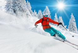 Snowbird Skier