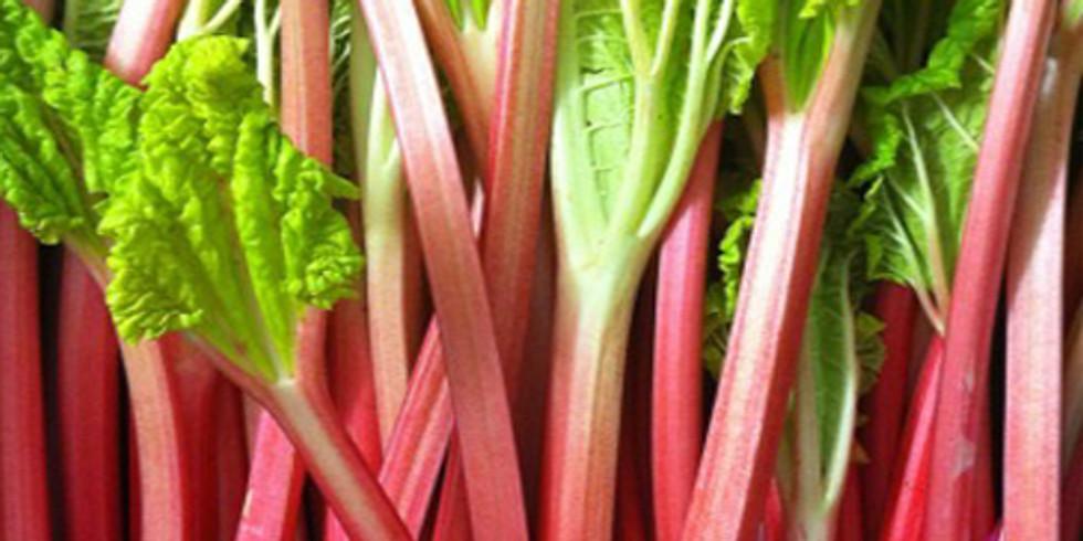 Rhubarb Fest Vendor Registration