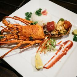 lobster-web-640x640