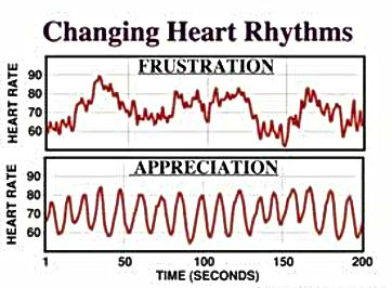changing-heart-rhythms.jpg