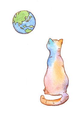 moon_cat_本画.jpg