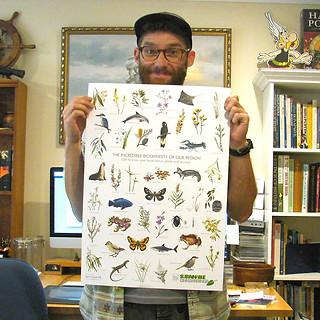 Flora/fauna illustrations
