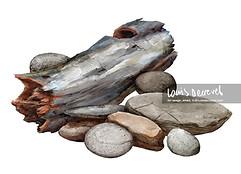 Logs and Rocks