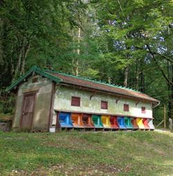 Le rucher de Lavaux, installé en 1900