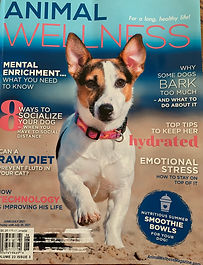 Animal Wellness issue June:July 21.jpg