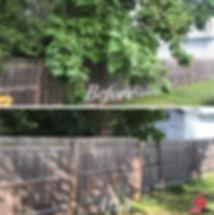 Lanscaping-Tree1.jpg
