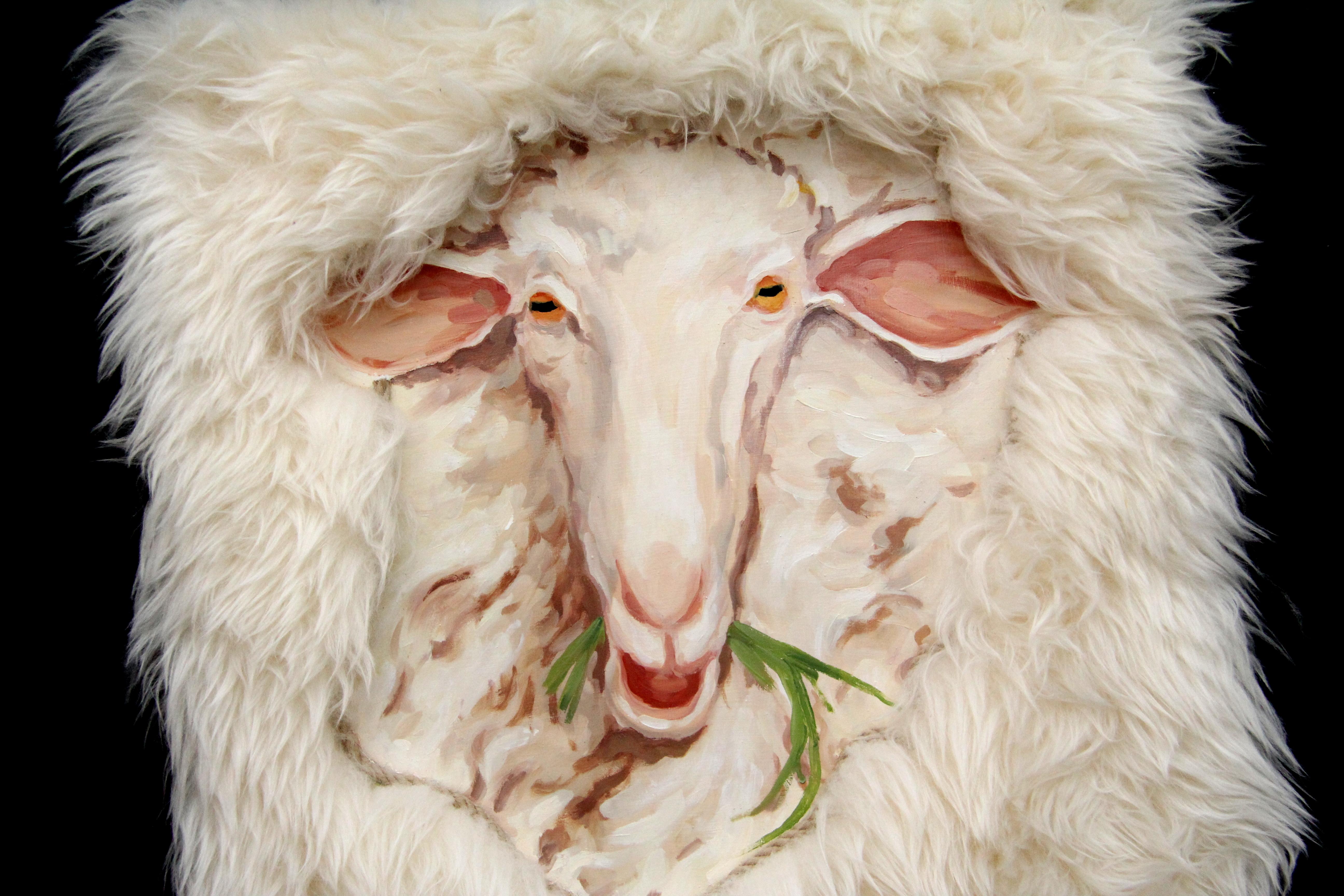 Zimmertür Schaf
