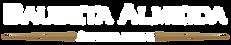 logo_baa2.png