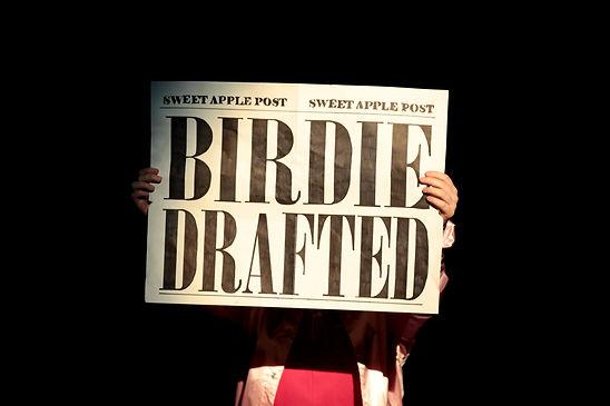 Bye.Bye.Birdie-3872.jpg