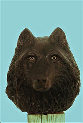 Wolf head-black walnut.jpg