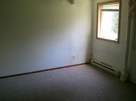 lower level bedroom.jpg