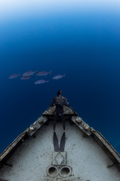 Shipwreck freediving in Nassau, Bahamas