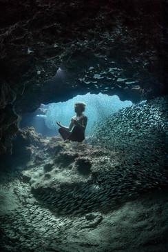Ocean Oneness