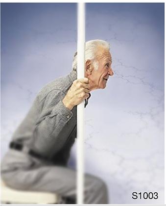 Guardian Safe T Pole & Base