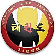 taekwondo, tiger, kub, dzierżoniów