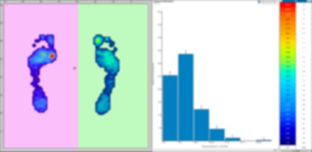 StancePad_Software_ScreenCapture.png