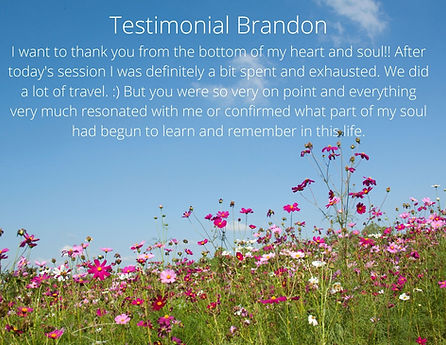 Testimonial Brandon I want to thank you