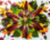 Produce-Mandala-Final-Entry-.jpg