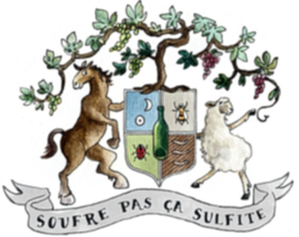 Logo SOUFRE PAS ÇA SULFITE