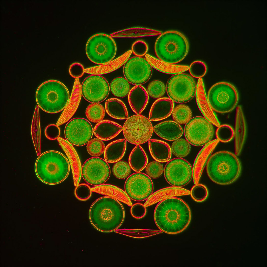 Practice circle copy