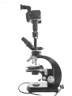 Zeiss WL Microscope