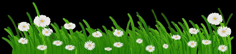 bloemetje.png
