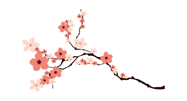 3-34049_cherry-blossom-png-transparent-i