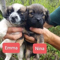 EMMA NINA.jpg