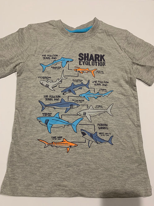 Shark Top