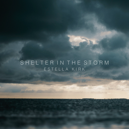 Shelter in the storm cover art FINAL.png