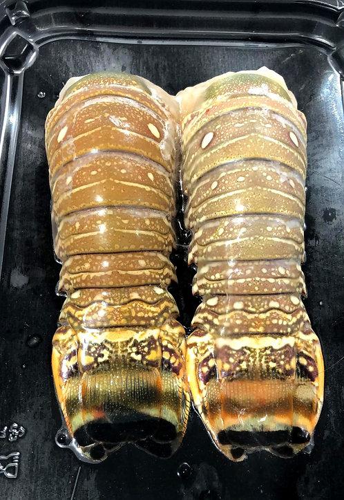 巴西龍蝦尾2條裝 (約227g)