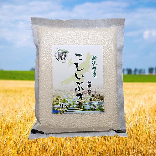 新潟縣「越伊吹」日本米(1kg)