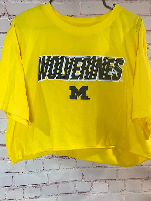 Michigan Wolverines Cropped