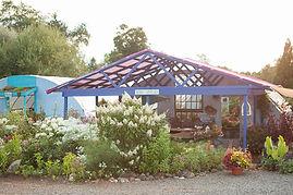 Native Perennial Gardens in Culpeper and Rappahannock Virginia Nursery