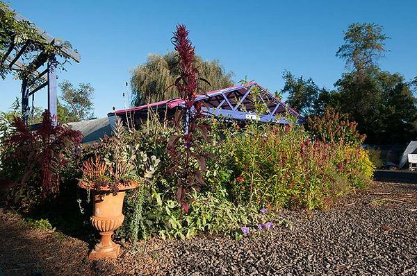 October Gardens.jpg