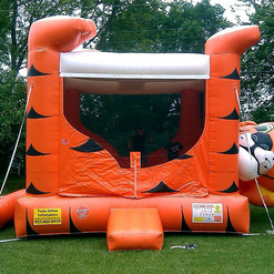 tiger belly bounce house.jpg