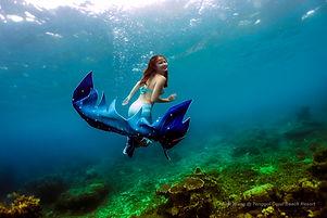 Adelinaocean6 watermark.jpg