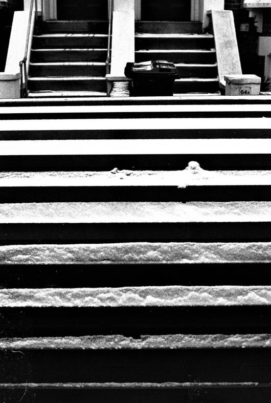 snowy stripes.jpg