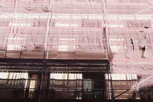 Mauve netting, 2